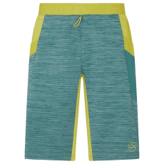 Force Short Men Pine/Kiwi