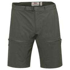 High Coast Hike Shorts Men Mountain Grey