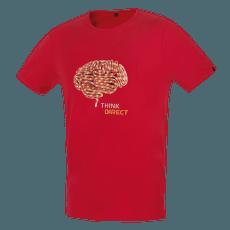 FLASH 5.0 brick (brain)