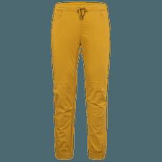 Notion Pants Men Amber