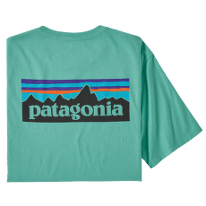 P-6 Logo Organic T-Shirt Men Light Beryl Green