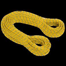 8.0 Phoenix Dry yellow