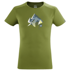 SUMMIT BOARD T-SHIRT SS Men FERN