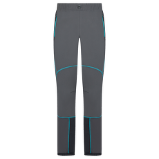 Vanguard Pant Men Carbon