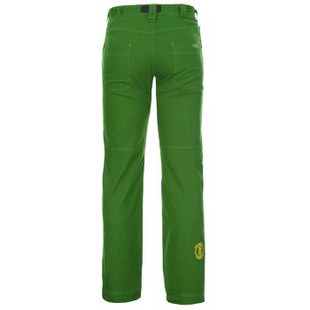 Edge 3.0 Pants Men green