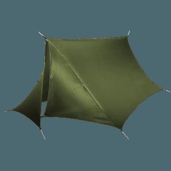 HouseFly Lichen
