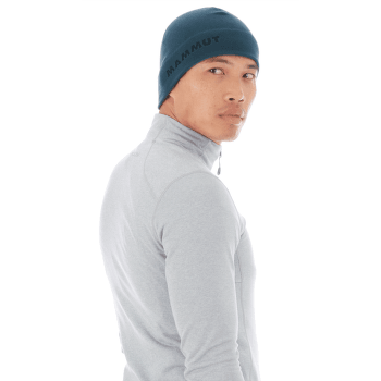 Fleece Beanie (1191-00540) wing teal 50227