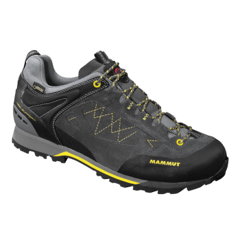 Ridge Low GTX Men graphite-vibrant 0801