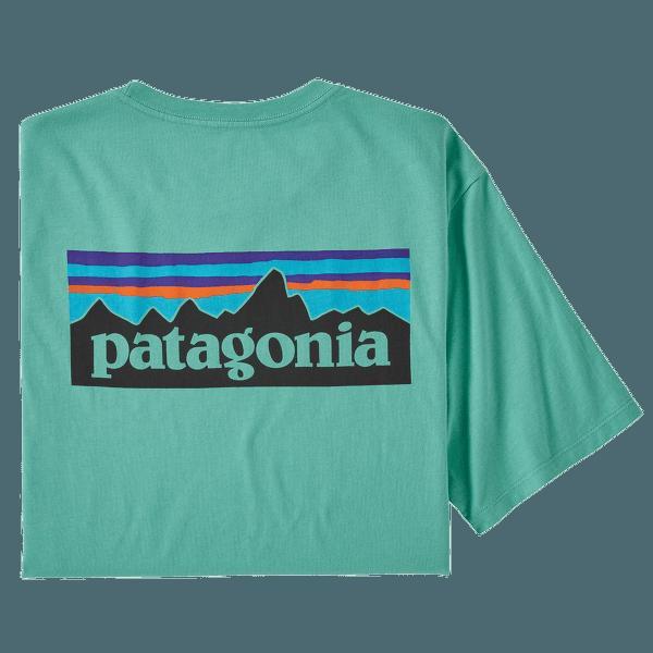 P-6 Logo Organic T-Shirt Men Light Beryl Green