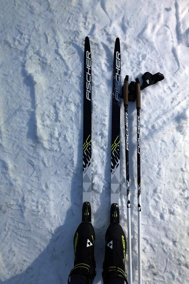 běžky v Alpách